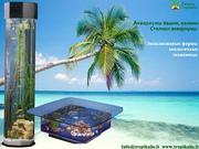 Аквариум,  аквариумы колоны,  башни